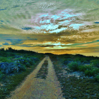 Railway Trail, Ferry Reach - 40 - Roland Skinner Bermuda Photography