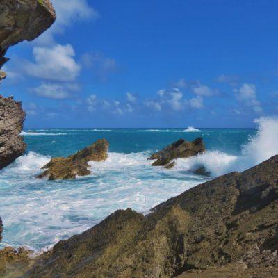 Cooper's Island - 17 - Roland Skinner Bermuda Photography