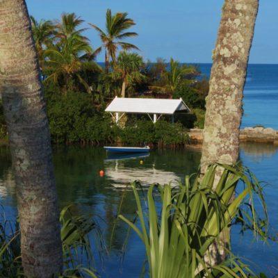 Mangrove Bay - 155 - Roland Skinner Bermuda Photography